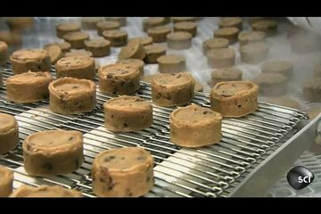 Chocolate Chip Cookies | How Its Made