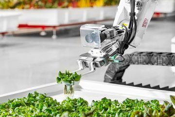 New autonomous farm wants to produce food without human workers