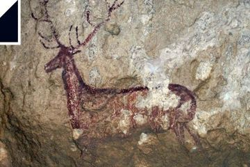 We should gene-sequence cave paintings to find out more about who made them
