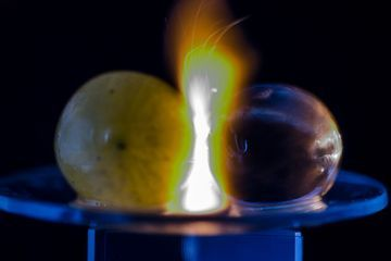 Microwaved grapes make fireballs, and scientists now know why