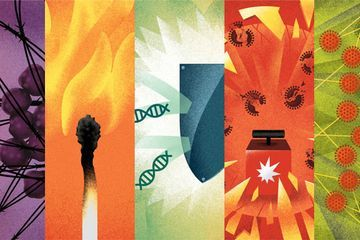 Here are 5 RNAs that are stepping out of DNA's shadow
