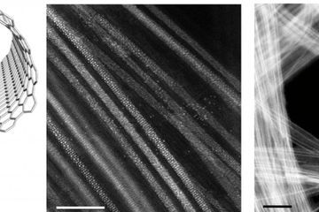 From 2D to 1D: Atomically quasi '1D' wires using a carbon nanotube template