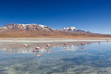 The search for new geologic sources of lithium could power a clean future