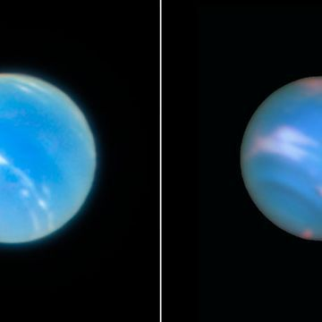 Move over Hubble. This sharp pic of Neptune was taken from Earth